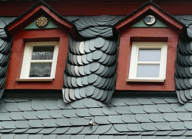 dakwerken dakraam